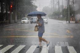 Siêu bão Haima hướng vào đảo Luzon của Phillippines