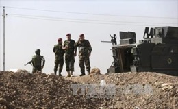 Mỹ đề xuất phối hợp chiến dịch tại Syria và Iraq
