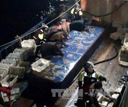 Hàn Quốc nổ súng bắt tàu Trung Quốc đánh cá trái phép