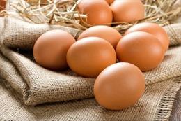 Mỗi ngày một quả trứng, tốt cho tim mạch