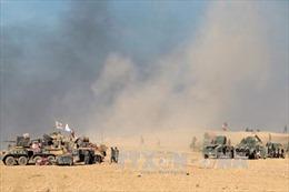 Quân chính phủ Iraq giao tranh ác liệt với IS tại Mosul