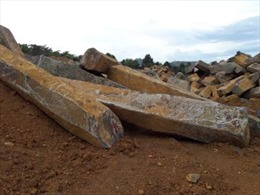 Tịch thu hơn 400 cây đá tại mỏ đá Đắk Kút