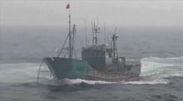 Xem cảnh sát biển Hàn Quốc nã đạn đuổi tàu cá Trung Quốc