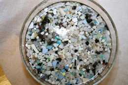 Anh điều tra tác hại của hạt vi nhựa đối với sức khỏe con người