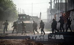 Ít nhất 57 phiến quân bị tiêu diệt trong chiến dịch ở Mosul