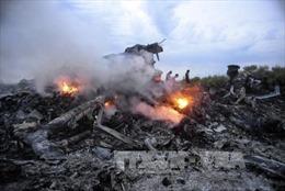 Công bố thủ phạm vụ MH17 muộn nhất vào 2018