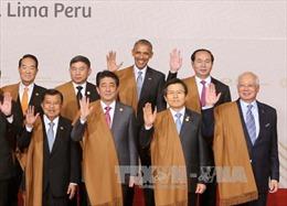 Chủ tịch nước dự Phiên họp toàn thể Hội nghị APEC 2016