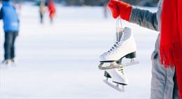 Nhật Bản đóng cửa sân trượt băng đông lạnh 5.000 con cá