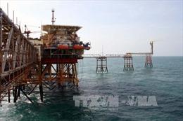 Phát hiện vỉa dầu mới tại giếng khoan Bạch Hổ - 47