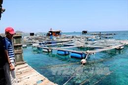 Phát triển kinh tế biển gắn với bảo vệ chủ quyền