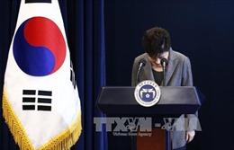Tổng thống Park Geun Hye xin lỗi nhân dân Hàn Quốc