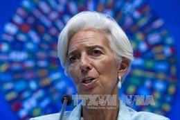 """Giám đốc điều hành IMF ra tòa vì tội """"tắc trách"""""""