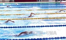Việt Nam giành 39 huy chương Vàng tại giải bơi Đông Nam Á