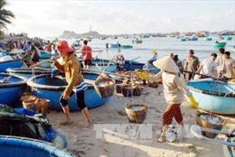 Ngư dân Quảng Trị tích cực khôi phục sản xuất