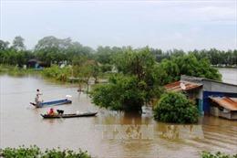 Cảnh báo lũ từ Bình Định đến Ninh Thuận có khả năng lên lại