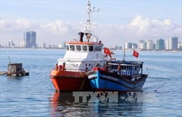 Bà Rịa-Vũng Tàu: Va chạm khiến sà lan và tàu container dính chặt nhau