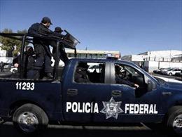 Thị trưởng Mexico bị bắn chết bên bàn ăn
