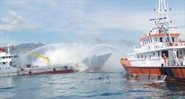 Tìm kiếm thuyền viên bị rơi xuống biển Bình Định