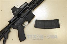 EU siết chặt quy định sử dụng và sở hữu súng