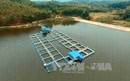 Bắc Giang ngăn chặn, xử lý tình trạng ô nhiễm môi trường