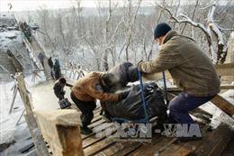 Đạt được thỏa thuận ngừng bắn thứ 9 tại vùng chiến sự Donbass
