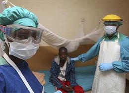 Dịch sốt Lassa nghiêm trọng nhất trong lịch sử tại Nigeria