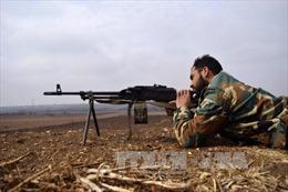 Nga, Thổ Nhĩ Kỳ nhất trí thúc đẩy lệnh ngừng bắn ở Syria