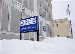 Tin tặc tấn công quy mô lớn nhằm vào OSCE