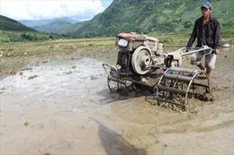 Hỗ trợ sản xuất để xóa nghèo bền vững