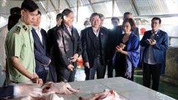 Đoàn giám sát Quốc hội kiểm tra an toàn thực phẩm tại Hải Dương