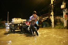 Khẩn trương khắc phục sự cố nước tràn ngược từ rạch Đĩa gây ngập nhà dân