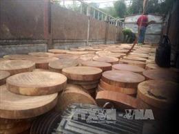Phát hiện xe tải chở gần 1.300 chiếc thớt gỗ nghiến từ phá rừng