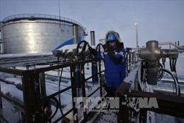 Diễn biến trái chiều trên thị trường dầu, vàng, chứng khoán thế giới