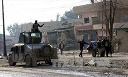 Lực lượng Iraq tiến sâu vào thành trì của IS ở Mosul