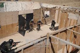 Bắt giữ thủ lĩnh IS ở Yemen tuyển mộ các phần tử tấn công liều chết