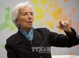 Hội nghị mùa Xuân của IMF-WB: Brexit không thỏa thuận sẽ là kết cụckhủng khiếp