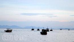 """Ngư dân """"xông"""" biển đầu năm"""