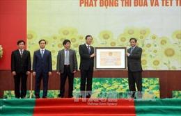 Tuyên Quang nhận bằng xếp hạng Di tích lịch sử Quốc gia đặc biệt Kim Bình