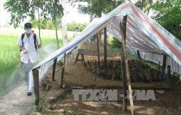 Kết quả xét nghiệm bệnh nhân nghi nhiễm cúm A/H5N1 tại Bạc Liêu