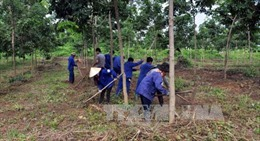 Chậm giao đất, giao rừng cho đồng bào dân tộc ở Tây Nguyên