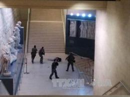 Pháp điều tra âm mưu khủng bố vụ nổ súng ở Viện bảo tàng Louvre