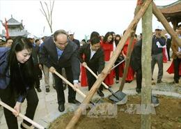 Cần làm cho việc trồng cây trở thành nếp sống của người Việt
