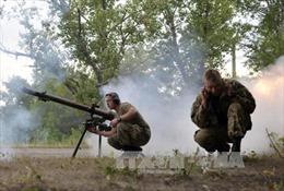 Nga, Đức kêu gọi ngừng bắn ở miền Đông Ukraine