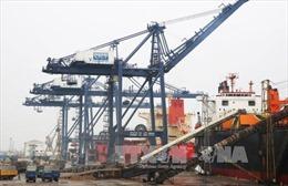 Việt Nam sẽ lọt vào top 30 nền kinh tế lớn nhất thế giới trước năm 2030