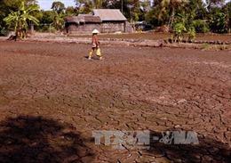 Đắp đập ngăn mặn, giữ ngọt trong mùa khô 2017