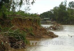 Khánh Hòa: Hàng trăm hộ dân bị ảnh hưởng do bờ sông Cái sạt lở