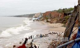 Đã tìm thấy nạn nhân bị sóng cuốn mất tích trên biển