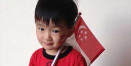 Singapore 'đau đầu' với tỷ lệ sinh giảm xuống mức quá thấp
