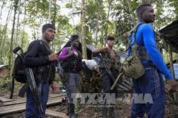 Phó Tổng thống Mỹ ủng hộ tiến trình hòa bình tại Colombia