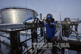 Algeria và Venezuela đang nỗ lực tái cân bằng thị trường dầu